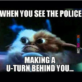 when the police approach you